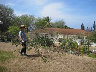 Edible LandscapeのJPG